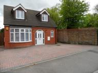 Detached Bungalow to rent in Bancroft Road, Luton...