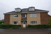 Apartment to rent in Brindle Court...