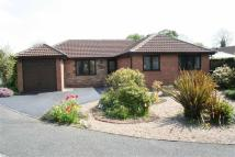 Bungalow for sale in Farncombe Lane, Oakwood...