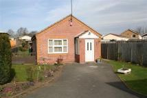 Bungalow for sale in Avon Street, Alvaston...