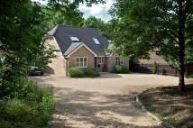4 bedroom Detached property for sale in 'Kenway' Rhododendron...