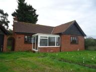 3 bedroom Detached Bungalow to rent in William Bush Close...