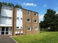 Flat to rent in Abbey Court, Waterbeach...