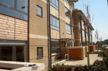 new Studio flat to rent in Ruth Bagnall Court...