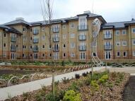 new Flat to rent in Hampden Gardens...
