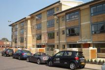 Studio apartment to rent in Ruth Bagnall Court...