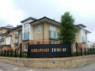 new property in Hampden Gardens...