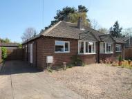 Semi-Detached Bungalow for sale in Fleet, Hampshire