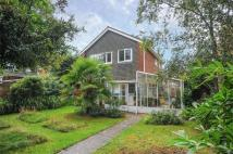Detached house in Bagshot, Surrey