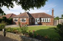 3 bedroom Detached Bungalow for sale in Thornway, Bramhall...