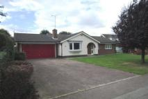 Detached Bungalow to rent in Pulford Drive, Thurnby...