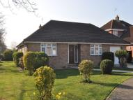 3 bed Detached Bungalow in The Oaks, Frinton-On-Sea...