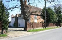 Halstead Road Detached house for sale