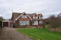 Detached Bungalow in Leas The Frinton-On-Sea...