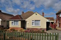 2 bed Detached Bungalow for sale in Walton Road...