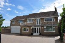 Detached property for sale in Heronsgate...