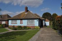 Detached Bungalow in Audley Way...