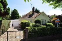 3 bed Detached Bungalow in Upper Third Avenue...