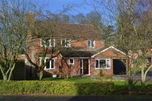 Detached property in Holm Oak Drive, Madeley...