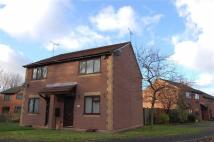semi detached house to rent in Daltry Way, Nr Crewe
