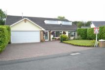 5 bed Detached home for sale in Naples Drive, Westlands...