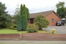 Detached Bungalow for sale in Stone Road, Trentham...