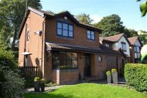 Detached home in The Elms, Porthill...