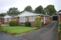 2 bed Detached Bungalow to rent in Goodwood Place...