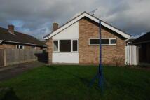 Detached Bungalow to rent in Hallfields Road, Tarvin...