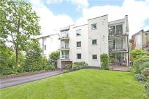 1 bed Apartment in Hamlet Road, London, SE19