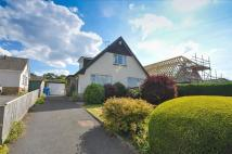3 bedroom Detached Bungalow in Ullswater Road, WIMBORNE...