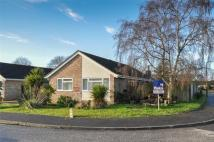 Detached Bungalow for sale in Sopwith Crescent, Merley...