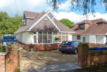 Detached Bungalow in Ivy Road, Merley...