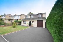 Detached house in Lacy Drive, WIMBORNE...