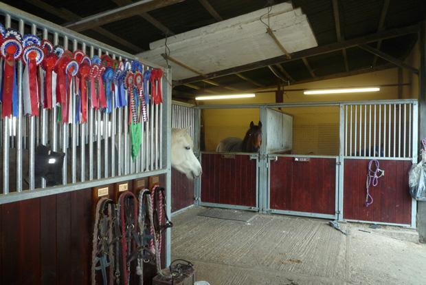 Stables in Barn