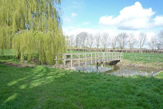 Pond & Bridge