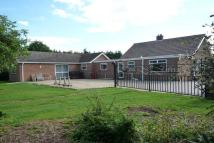 Detached Bungalow in Rodham Road, March, PE15