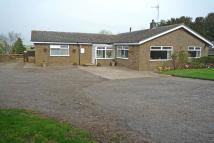 Detached Bungalow in Cowbit - Spalding