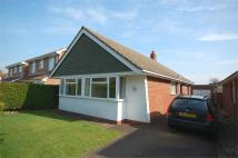 3 bed Detached Bungalow in Westbourne Avenue...
