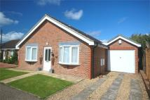 3 bed Detached Bungalow in Manor Gardens...