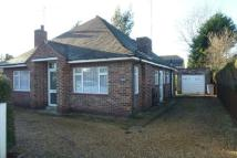 Detached Bungalow in Pytchley Road, Kettering