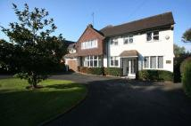 Detached property for sale in New Forest Lane, Chigwell