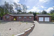 Bungalow for sale in Minchers Rise, Rock Road...