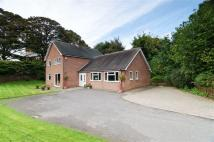 4 bed Detached house for sale in School Lane, Wellington...