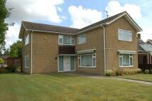 4 bedroom Detached property in Blenheim Close, Haverhill