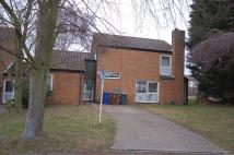 4 bedroom semi detached house to rent in Eriswell Drive...