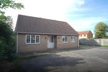 Detached Bungalow in Wilton Road, Feltwell...