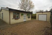 property to rent in The Grove, Bury St. Edmunds