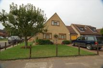 Semi-Detached Bungalow to rent in Oak Drive, Beck Row...