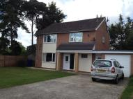 property to rent in St Helena Walk, Mildenhall, Bury St. Edmunds